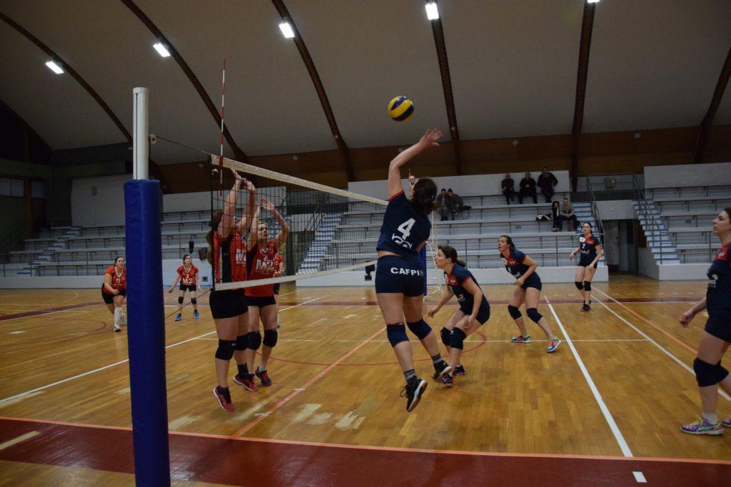 Amiens Métropole Volley Ball (AMVB)